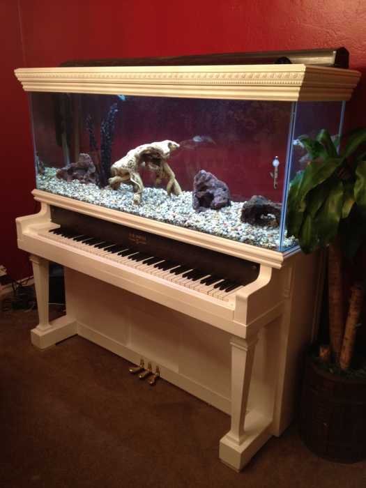 Indoor-aquarium-just3ds.com-1