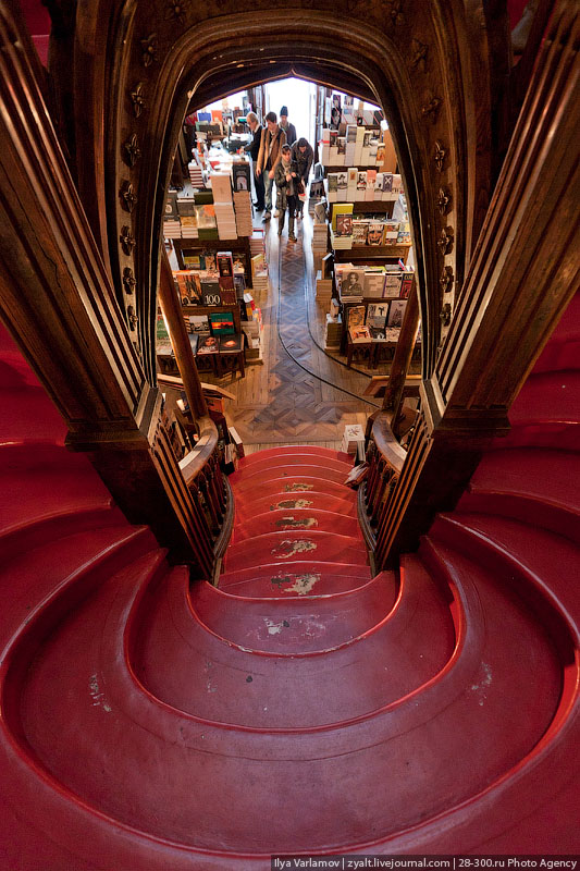 Most-beautiful-bookstore-just3ds.com-12