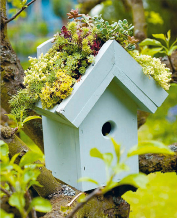 Garden-in-birdhouse-just3ds.com-1