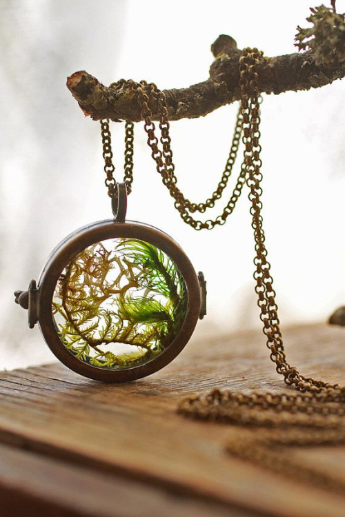 Garden-in-pocket-watches-just3ds.com-2