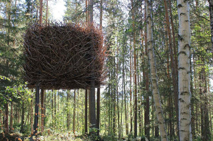 Nest-in-a-tree-Sweden-just3ds.com-1