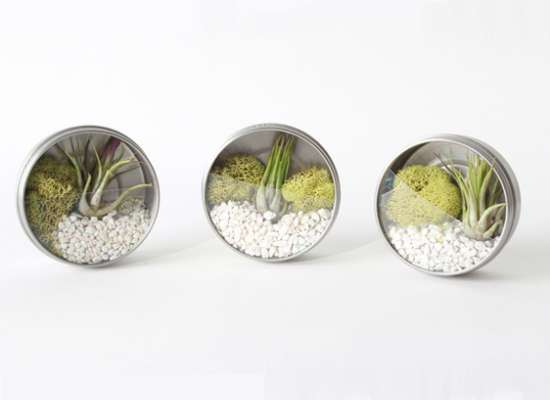 Terrarium-magnetic-spice-jars-just3ds.com-2