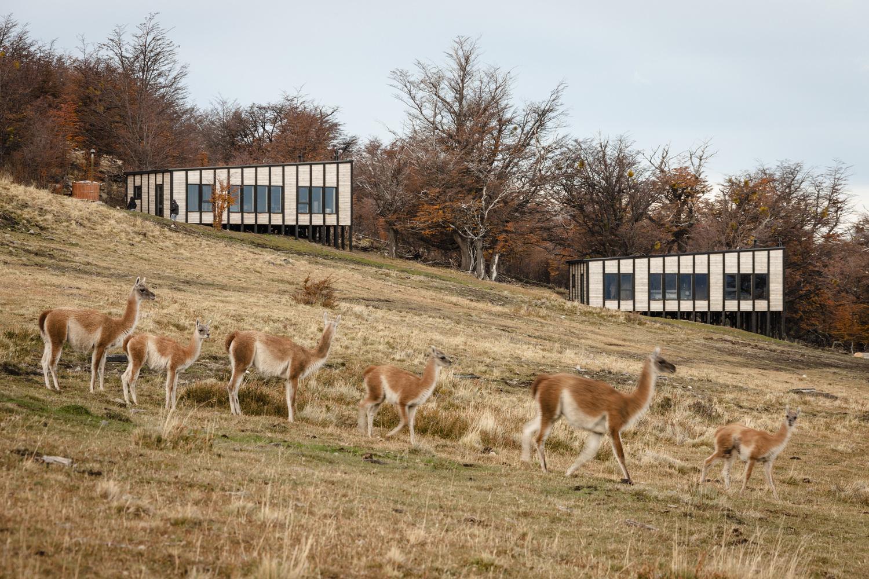 Awasi-Patagonia-Hotel-just3ds.com-3